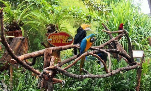 Gembira Loka állatkert