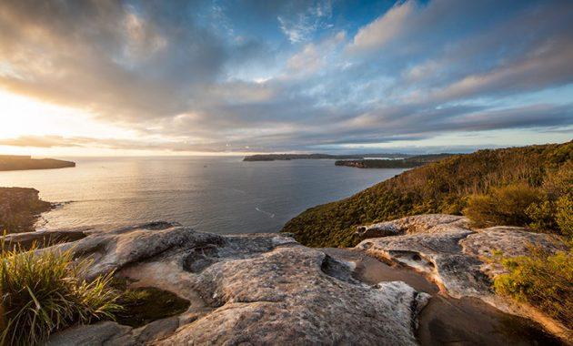 Sidney'deki En İyi ve Güzel Parklara Bir Seyahat Rehberi