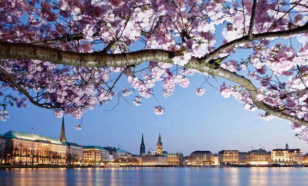 Primăvara în Germania: vreme, ce să împachetezi și ce să vezi